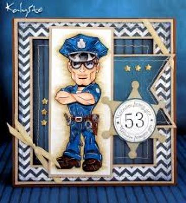 Районни полицейски управления Видин